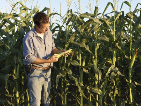 Ohio Certified Crop Adviser Pre-Exam Training Seminar