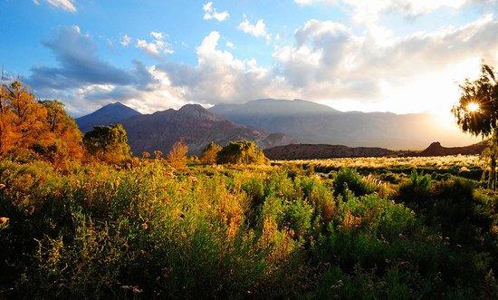 Mendoza Sunrise