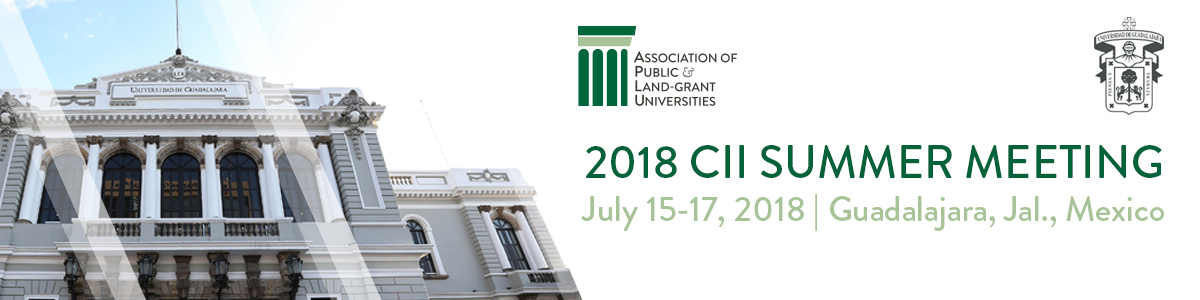 2018 CII Summer Meeting