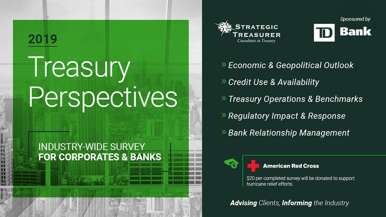 10302018_TreasuryPersp-Survey-Thumb