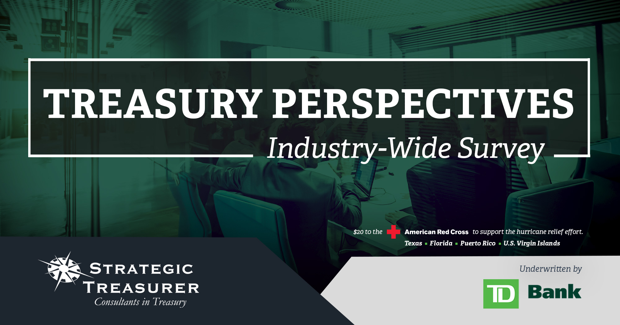 Treasury-Perspectives-Survey-2017---Email full log