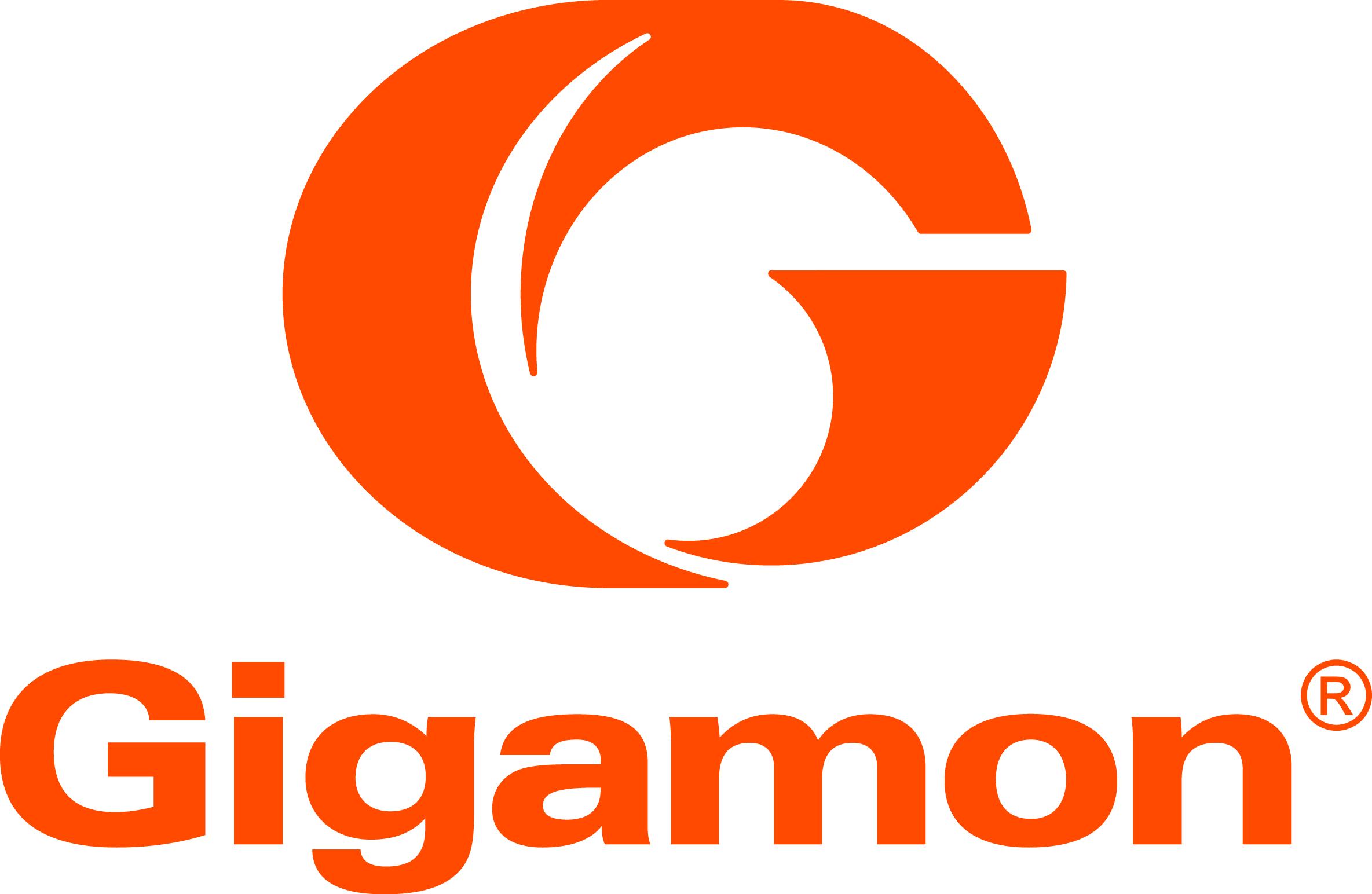 Print-2015-Gigamon-Free-Standing-Orange-Logo