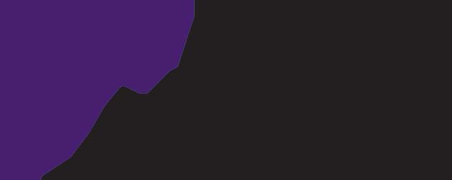 logo-Armis