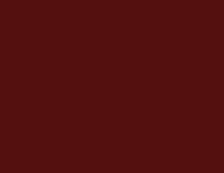 logo-Lares