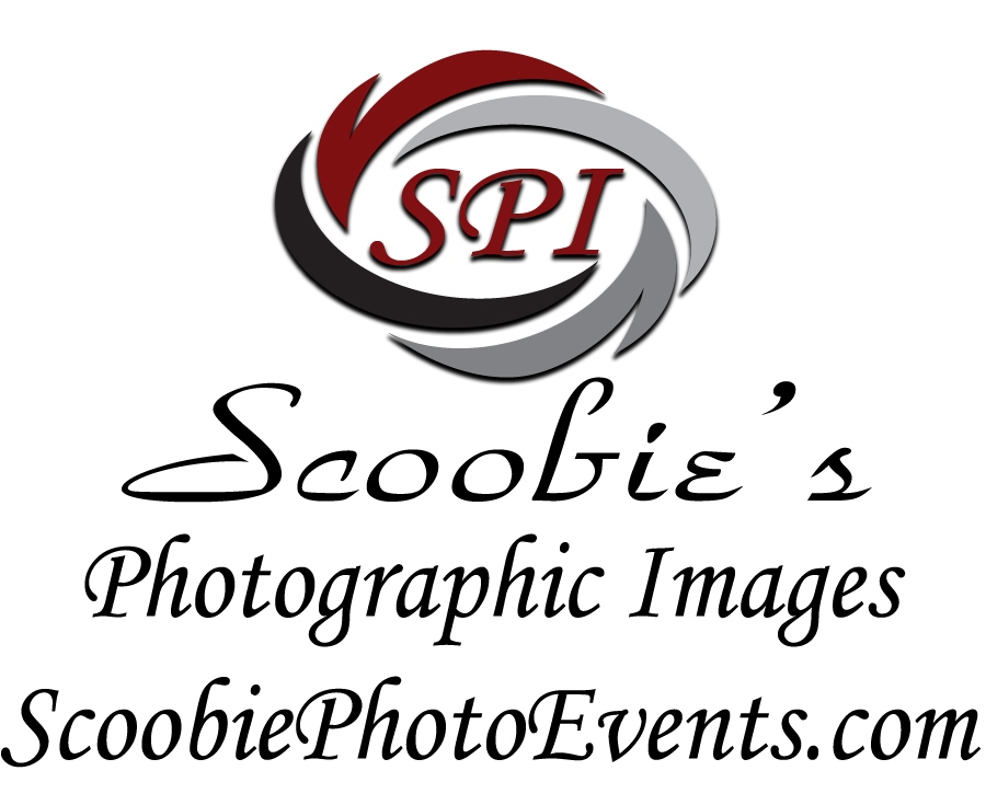 2017 MPI SPI Logo cropped