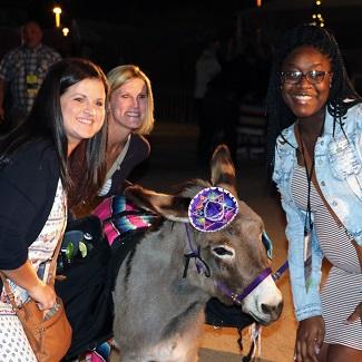IMG_4416-donkey party