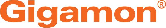 2020 - Copy of Web-Gigamon-Orange-Logo