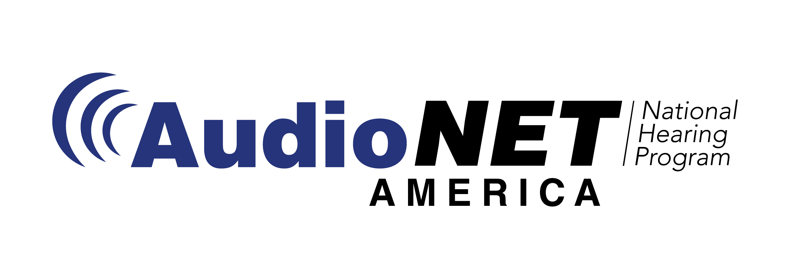 AudioNet Color Logo