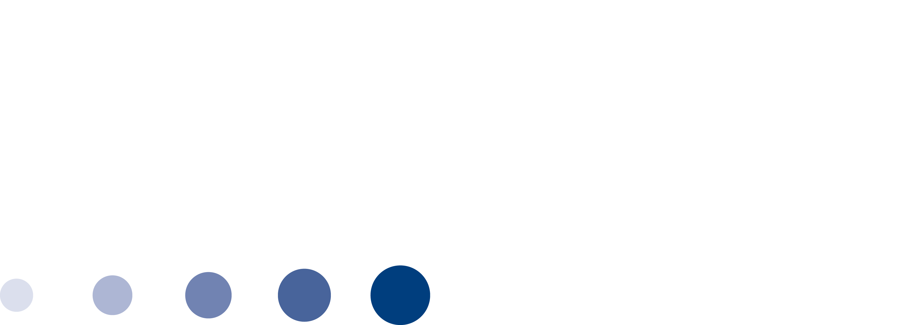 nbmbaaa_logo transparent