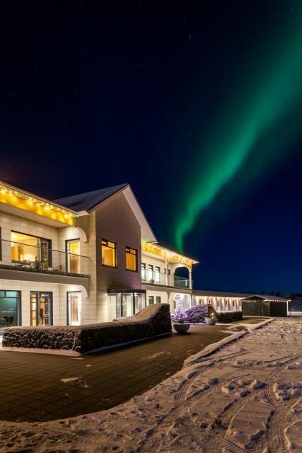 Tufts Iceland 6