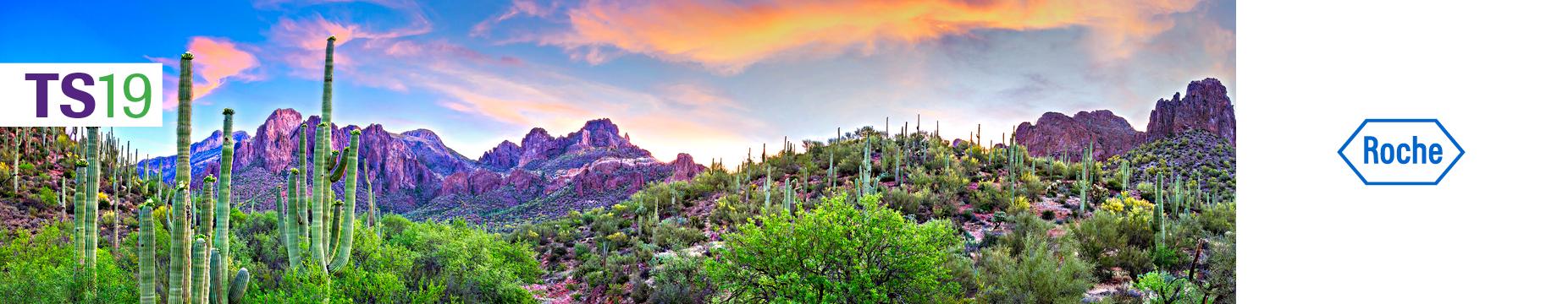 Tucson Symposium 2019