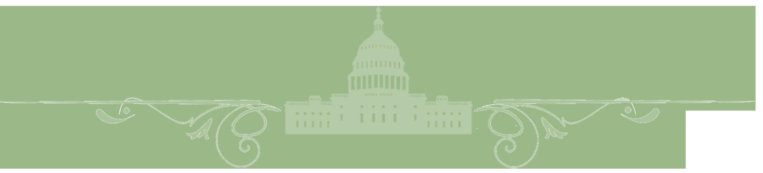 DC Divider 2018 NFIC Half Size Lt Green
