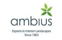 Ambius-01