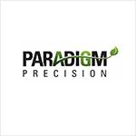 Paradigm Precision