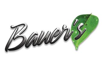 Bauers