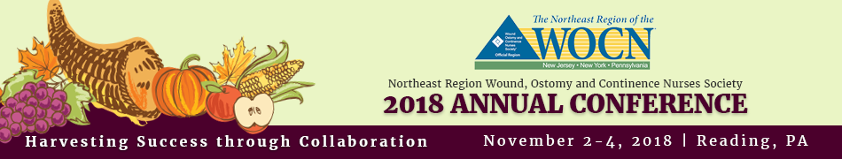 Northeast Region Wound, Ostomy and Continence Nurses Society 2018 Annual Conference