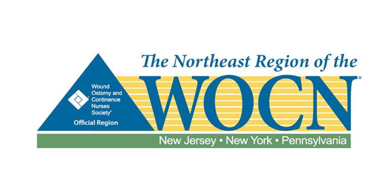 NER 2018 Logo
