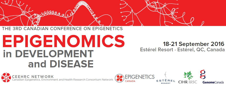 Epigenomics in Disease and Development