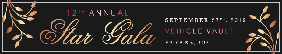 12th Annual Star Gala