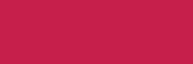 Plexus logo small