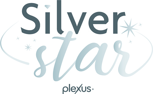 Silver Stars 2015-2020