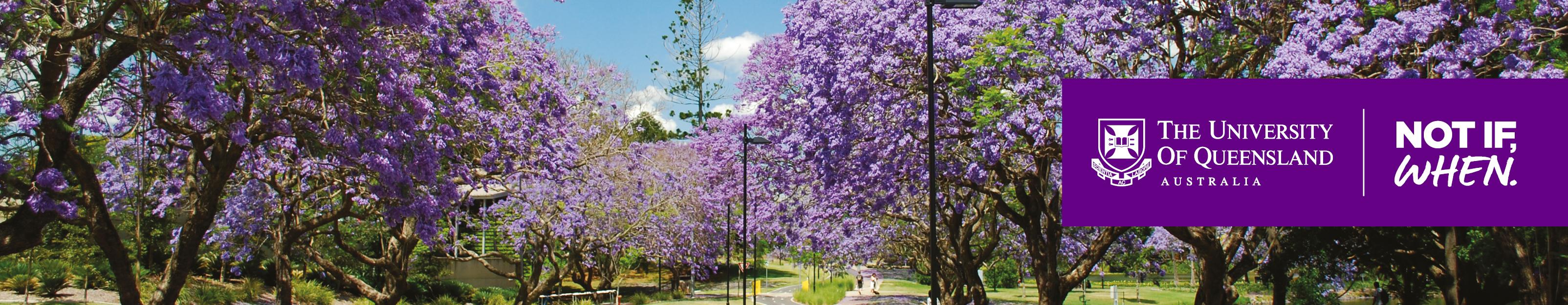 UQ Alumni High Tea in Toowoomba