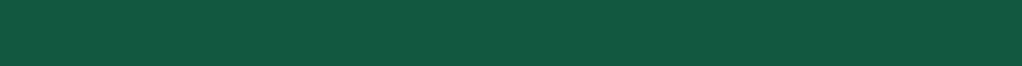 Green Divider v926
