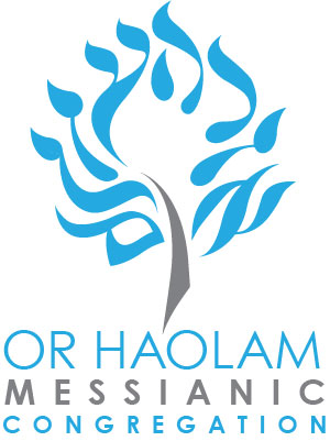 OHMC-logo-01