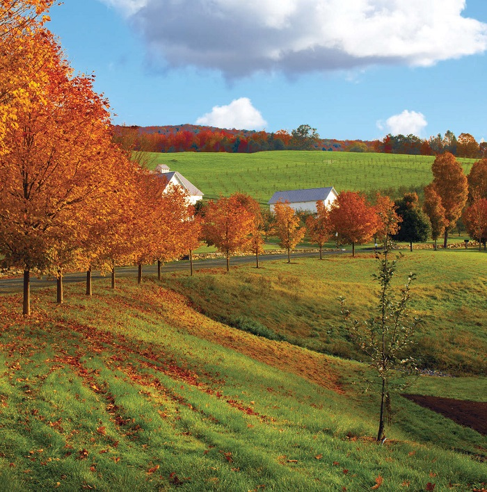 700-Backroads-Of-Vermont