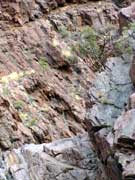 Flinders-2-048-web-vertical-layered-rockface