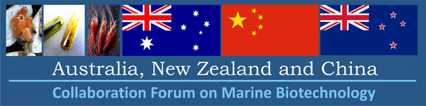 ANZ_China_Forum_Banner_IMBC