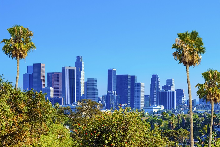LA Large Skyline-resized