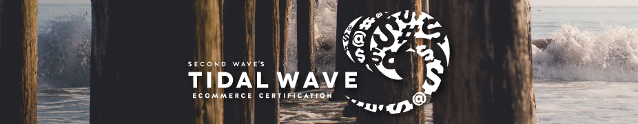 Tidal Wave eCommerce Training - Dallas, TX - August 10-11, 2017