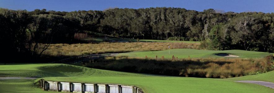 ritz_golf_banner