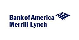2013 BAML Logo