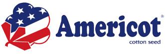 Americot-web