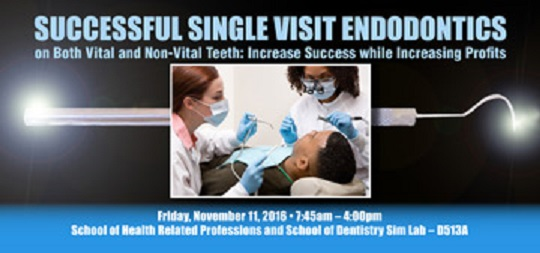 Successful Single Visit Endo banner2