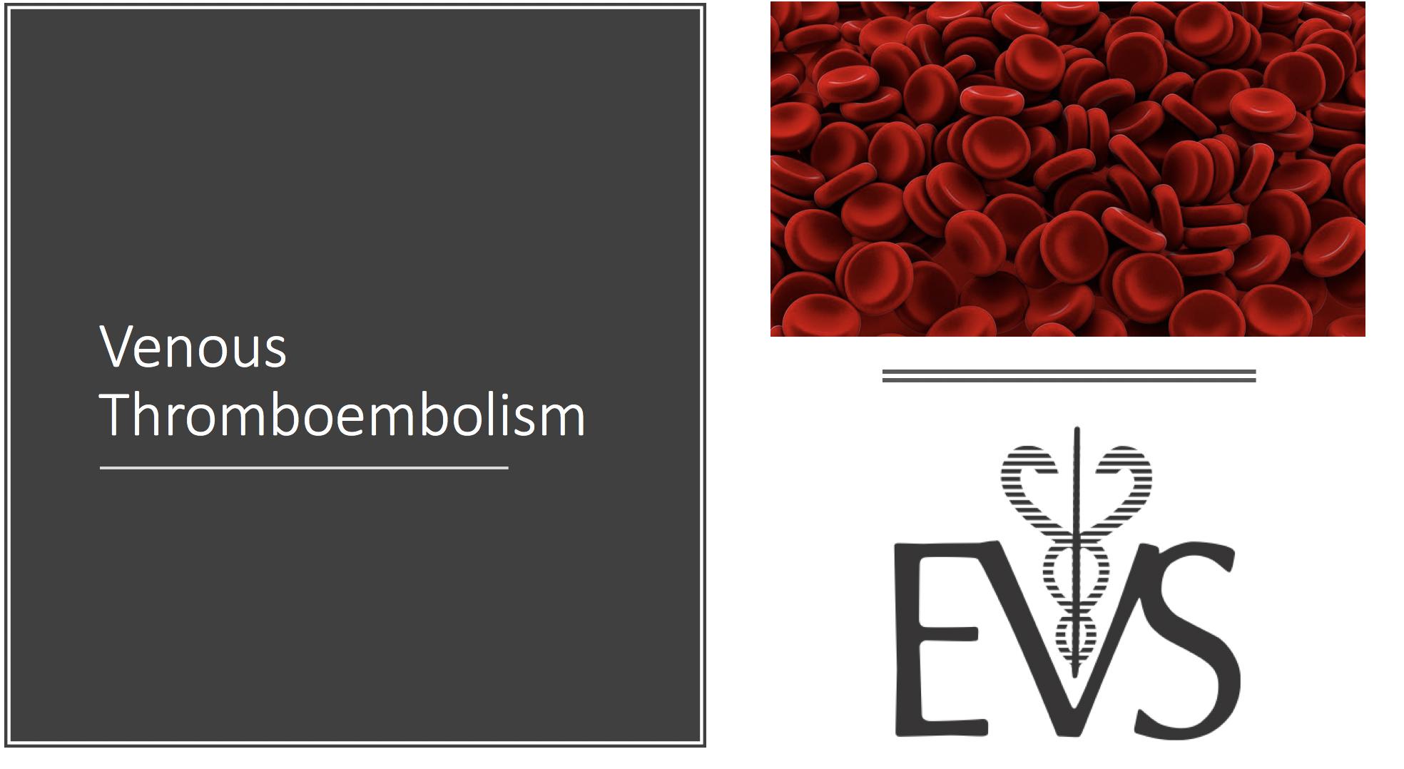 Venous thromboembolism (VTE) image