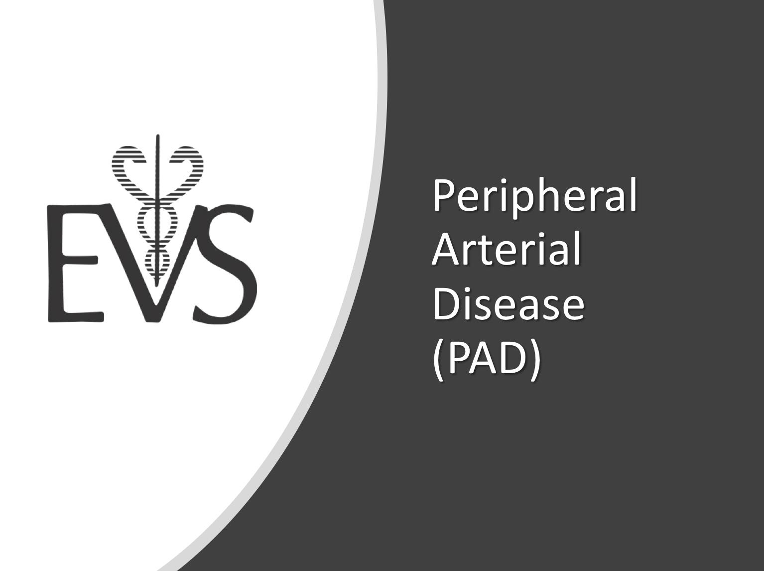 Pheripheral Arterial Disease PAD image