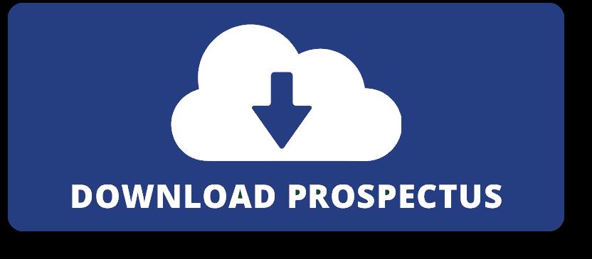 download prospectus blue