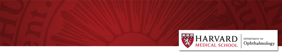 website-invitation-banner