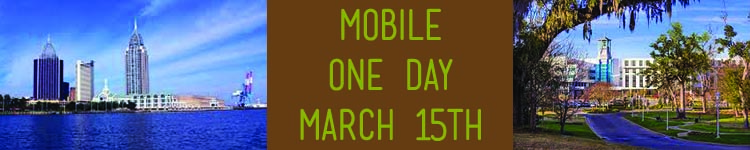 AL HFMA Mobile One Day
