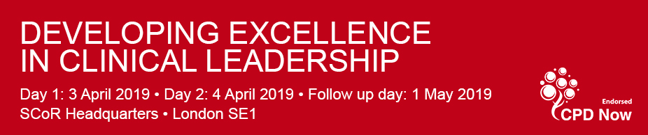 Developing-Excellence-APRIL2019-926x124