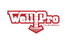 Bakken Gold WellPro