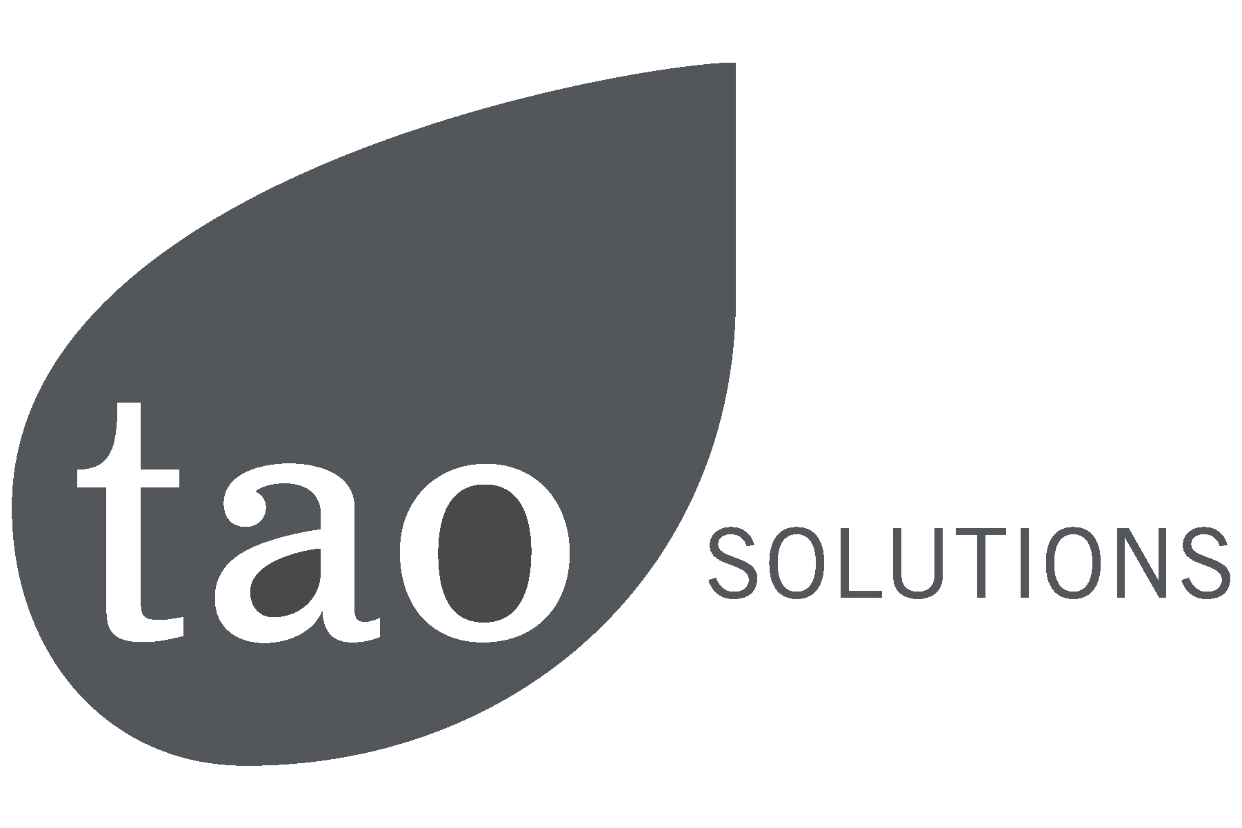 New TAO Solutions Logo