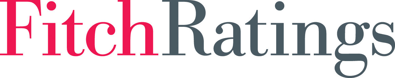 Fitch Ratings Primary logo (jpg)-2013 (2)