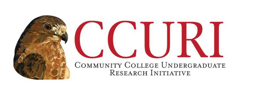 CCURI Logo 926