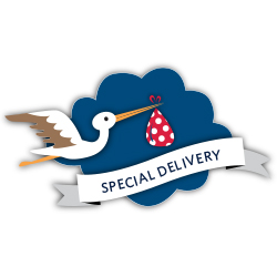 SPECIAL-DELIVERY_Graphic-Element_lightbg_250x250