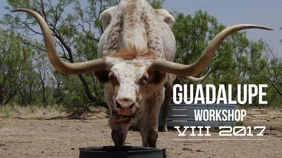 Guadalupe VIII 2017
