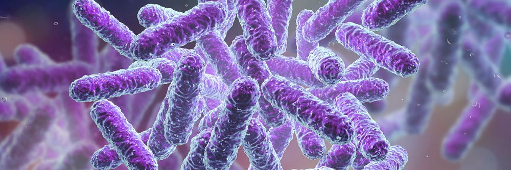 The Microbiome: Emerging Opportunities for Biopharma